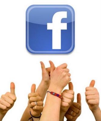 Fan Page - público viral